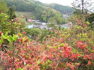 090505_1028_1_豊野つつじ山公園(長野市)