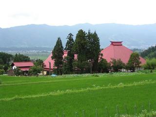 090711_1445_稲泉寺の蓮遠景(木島平村)