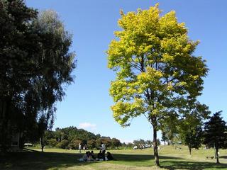 090920_1348_やまびこの丘公園(木島平村)