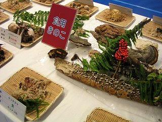 091024_1030_2009長野まるごと秋祭り・第32回信州きのこ祭り(長野市)