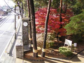 091114_1218_波田小学校の紅葉(波田町)