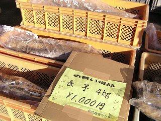 091114_1449_JAグリーン長野「ながいも祭り」(長野市)