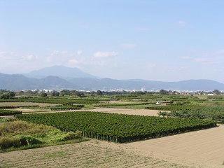 090922_1439_松代大橋から長野市内(長野市)