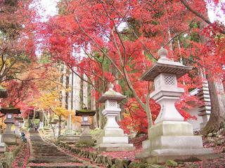 091118_1144_若穂保科・清水寺の紅葉(長野市)