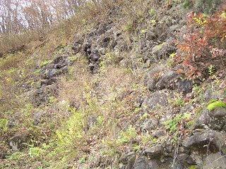 091118_1213_井上の枕状溶岩(須坂市)