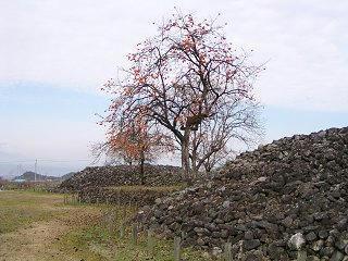 091122_1158_県史跡「八丁鎧塚古墳」(須坂市)