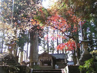 091123_1300_大山田神社(下條村)