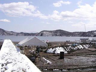 100322_1216_第18回野尻湖発掘(信濃町)