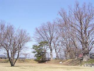 100404_1233_長野県史跡伴野城跡(佐久市)