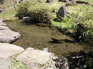 100425_1209_龍興寺清水(木島平村)