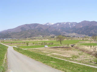 100425_1242_飯山市常盤地区の菜の花畑(飯山市)