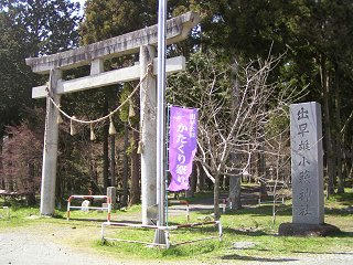 100429_1353_出早公園かたくり祭り(岡谷市)