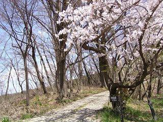 100501_1209_茶臼山トレッキングコース(長野市)