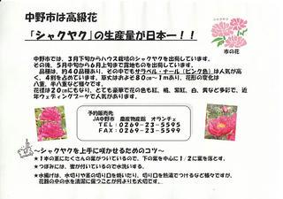10_シャクヤクの生産量が日本一