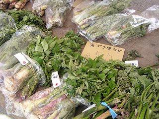 100509_1036_とみくら山菜まつり(飯山市)