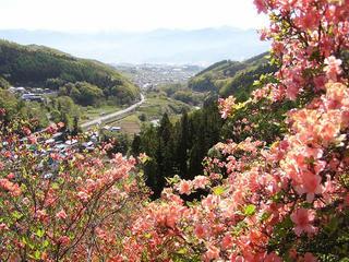 100515_0910_豊野つつじ山公園(長野市)