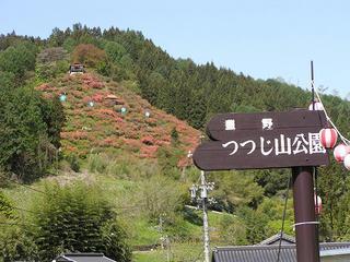100515_0927_豊野つつじ山公園(長野市)
