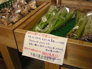100613_1159_道の駅花の駅千曲川(飯山市)
