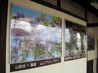 100717_1526_長野電鉄綿内駅に設置された観光用看板(長野市)
