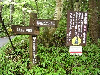 100819_1301_碓氷峠遊歩道(軽井沢町)