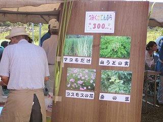 100918_1135_天龍峡花の里・天龍峡そば祭り(飯田市)