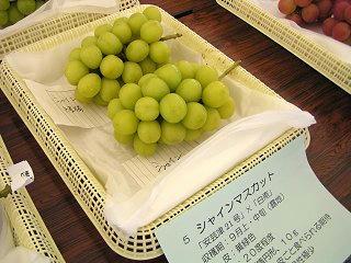 100919_1132_すこうぶどう祭り2010(須坂市)