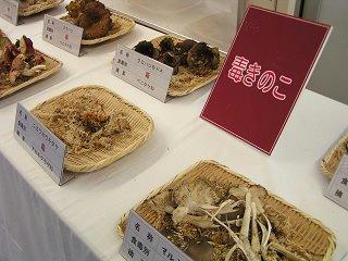 101002_1102_2_長野まるごと秋祭り(長野市)