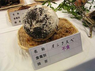 101002_1103_長野まるごと秋祭り・オニフスベ(長野市)