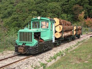 101010_1228_第3回王滝森林鉄道フェスティバル(王滝村)