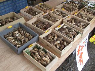101009_1308_第7回信州松本そば祭り・販売ブースに並ぶ「マツタケ」(松本市)