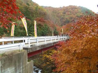 101113_1502_箕輪ダム・もみじ湖(箕輪町)