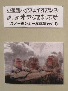 110212_1650_スノーモンキー写真展 vol.3 (小布施町)