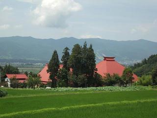 110709_1249_蓮寺・稲泉寺のハス(木島平村)