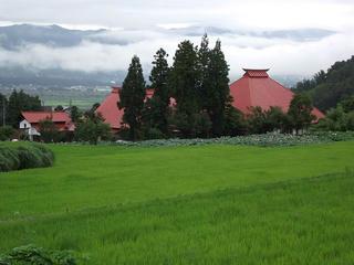 110730_1137_稲泉寺の大賀ハス(木島平村)