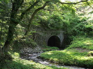 110813_0830_北の沢の渡河橋(辰野町)