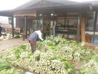 121124_1343_道の駅の農産物直売所に並んだ野沢菜(飯山市)