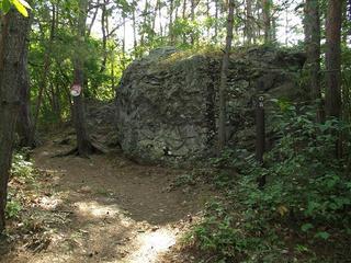 120817_0953_雁田山・一の岩(小布施町)