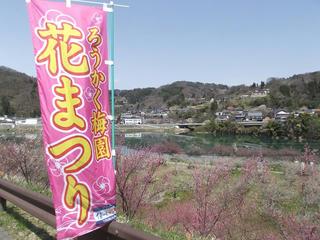 130414_1140_ろうかく梅園(長野市)