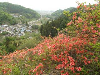 130519_1014_豊野つつじ山公園(長野市)