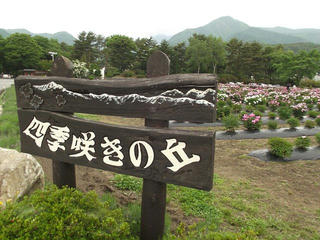 130601_1257_養命酒駒ヶ根工場・四季咲きの丘(駒ヶ根市)