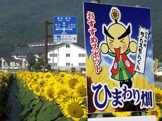 130814_0725_国道153号線共同店舗前花壇のひまわり(平谷村)