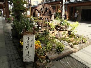 131006_1253_いいやま花フェスタ 寺町花街道(飯山市)