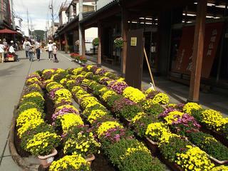 131006_1256_いいやま花フェスタ 寺町花街道(飯山市)