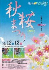 13_秋桜まつり(表)