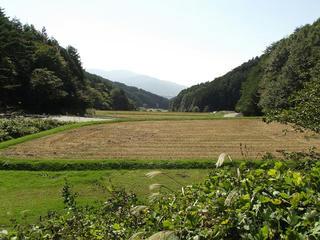 131012_1108_火山峠にある芭蕉の松(駒ヶ根市)
