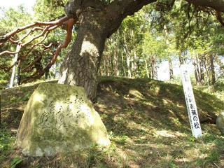 131012_1104_1_火山峠にある芭蕉の松(駒ヶ根市)