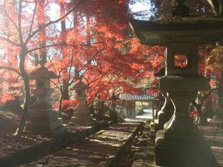 131124_0849_清水寺の紅葉(長野市)