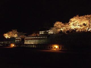 140416_2036_松代城跡の夜桜(長野市松代町)
