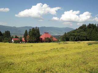 140921_1220_実りの秋~黄金色に染まる木島平の秋の風景(木島平村)