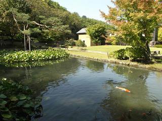 141011_1148_山寺常山邸(長野市松代町)